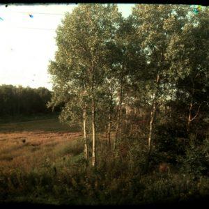 Na trasie PKP (96) – gdzieś na trasie Brzeg-Lublin