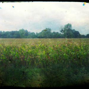 Na trasie PKP (97) – gdzieś na trasie Brzeg-Nysa