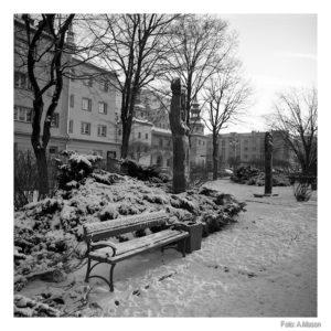 Brzeskie zimowanie