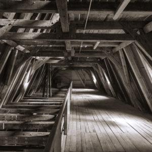 Pod dachem brzeskiego ratusza