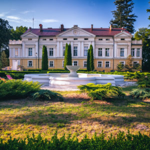 Read more about the article Pałac Sasino