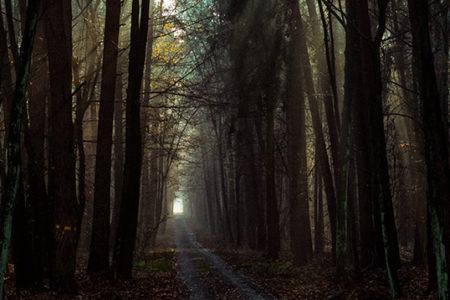 Wspomnienie jesieni