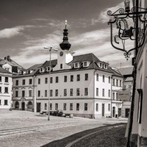 Read more about the article Hradczański konik