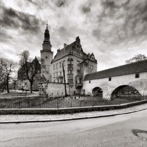 Oleśnicki zamek