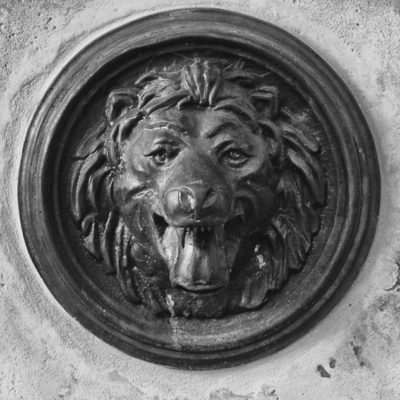 Wrocławski lew