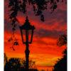 Wrocławski latarniany kiczyk