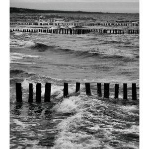 Morze biega przez przeszkody
