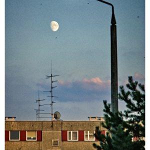 Księżyc w misce
