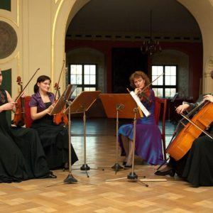 Read more about the article Neo Quartet