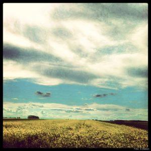 Niebo na trasie samochodu Lublin-Brzeg (1)