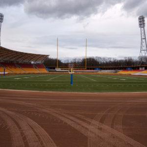 Murawa Stadionu Olimpijskiego