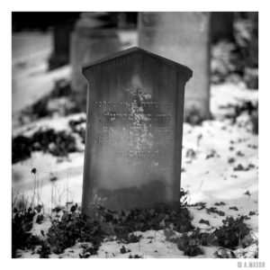 Cmentarz żydowski w Brzegu
