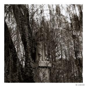 Ukryty w liściach