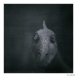 Dinożarł